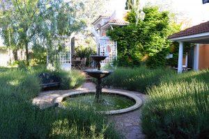 11-jardin